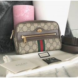 Gucci Ophidia small belt bag