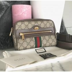 Gucci Ophidia small belt bag